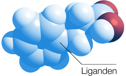 Example of a ligand
